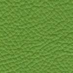 FL.7930 lima green
