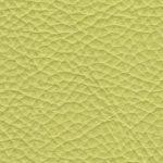 FL.7927 lemon