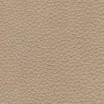 ANI_3630 sand
