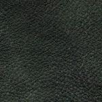 LUN_7863 dunkelgrün