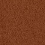 ELD.2517 cinnamon