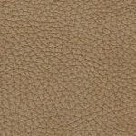 NEV.2420 dune